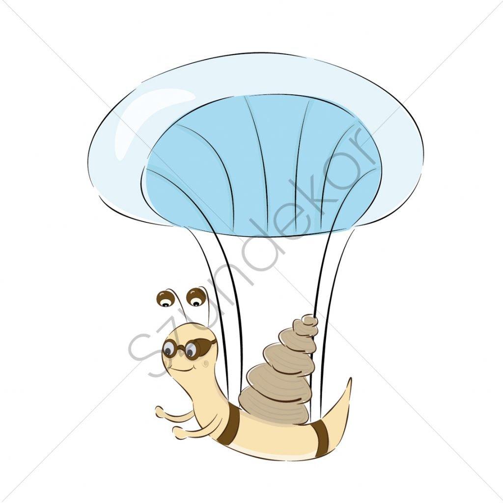 Ejtőernyős csiga